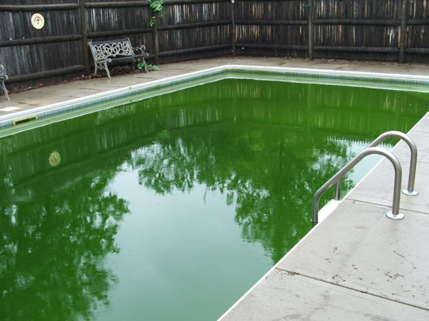 pools water color and health